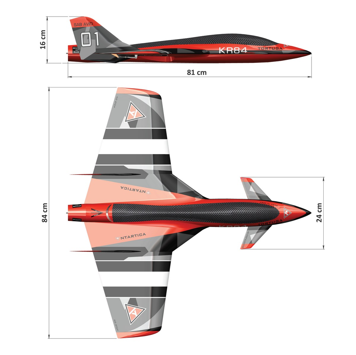 sab-tortuga-dimension-avio.jpg